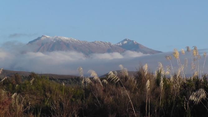 Ruapehu from the head of the Whanganui River